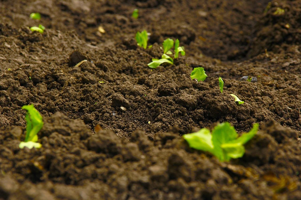 soil-mechanics